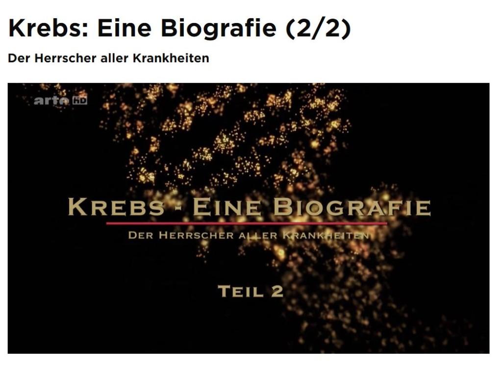 KrebsT2